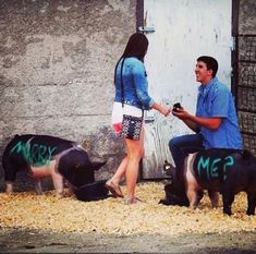 Funny Wedding Moments - Does it get any more romantic? Wedding Advice, Wedding Humor, Wedding Pics, Funny Animal Memes, Funny Animals, Funny Images, Funny Photos, Wtf Funny, Hilarious Pictures