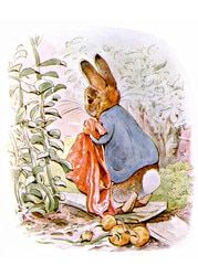 Dropping Onions by Beatrix Potter