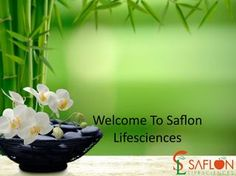 Is It Really Beneficial Thing To Have A Pharma Franchise Business In India?
