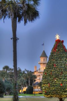 Jekyll Island Christmas Tree Lighting Festival November 24th, 4:00 pm. Stay late for the fireworks. www.jekyllclub.com