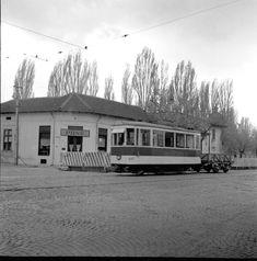 V 01 S 447 Bd. 1. Mai, Bucharest, Socialism, Old City, Locomotive, Vintage Photos, Nostalgia, Memories, House Styles