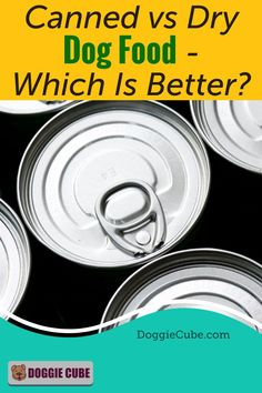 Canned vs dry dog food - Which is better? Before you decide on getting the best canned dog food or DIY some homemade dry dog food for your pet's diet, it's a good idea to compare both options. Canned Dog Food, Dry Dog Food, Dog Nutrition, Dog Diet, Medical Problems, Dog Care Tips, Homemade Dog Food, Nutritious Meals, Dog Grooming