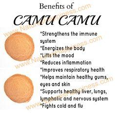 Raw Organic Camu Camu Powder | Organic and Non-GMO  http://www.natureshappiness.com/camu-camu-berry-powder-8oz/