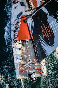 Team Alvimedica inport race in the Volvo Ocean Race