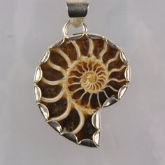 Ammonite fossil pendant, necklace, sterling silver, handmade