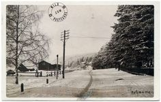 """The description on this postcardsays that it is a reprint of a 1920 photo by Lauri Marjanen of Puijontie (""""street of Puijo"""") in Kuopio, Finland. Finland Travel, Homeland, Dna, Objects, Country, Street, Poster, Outdoor, Outdoors"""
