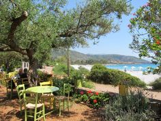 Restaurant in Kardamili garden on the beach Hotel Elies, Mani Beach Hotels, Restaurant, Garden, Plants, Travel, Tower House, Travel Report, Greece, Viajes