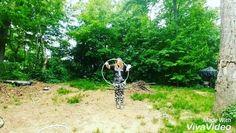 #hooplove #hulahoop #hoop #hoopitout #bodypositivity #hoopla #hooplah #hooplife #hoopspam #flowarts #flow #hoopersofinstagram #infinitecircles #ichoopers #flowstagram #hoopersofig #hoopersofnorthcarolina #curvyhoopersunite #asheville #ashevillenc #witchhouse #witch #witchy #Молодостьмоя by est1994jnaz