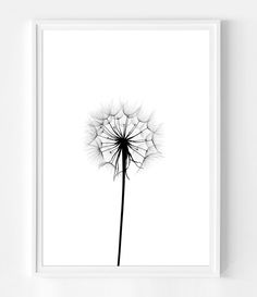 Dandelion Print, Black and White Scandinavian Print, Dandelion Wall Art, Botanical Print, Flower Wall Art Photography Scandinavian Poster, Design Scandinavian, Black And White Prints, White Art, Botanical Wall Art, Botanical Prints, Dandelion Wall Art, Flower Prints, Flower Wall