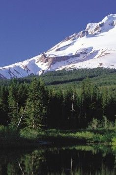 Mount Hood, home to the largest ice caves in the contiguous United States!