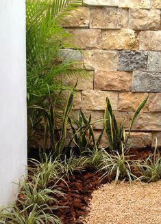 CASA CR-180: Jardines de estilo minimalista por EcoEntorno #paisajismo Urbano