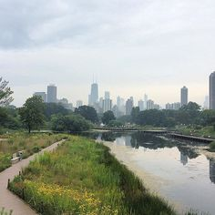 even a cloudy day in #chicago is a great day. find out how @_thewino fared during her first trip to the #windycity now on the blog!