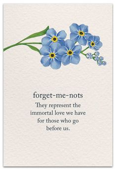 Vergissmeinnicht forget me not Words Quotes, Me Quotes, Sayings, The Words, Spiritual Symbols, Yoga Symbols, Flower Meanings, Symbols And Meanings, Language Of Flowers