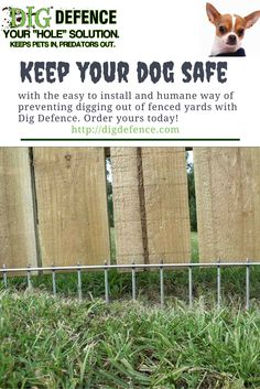 Easy to install. Humane. Super effective. Get the Dig Defmence solution for keeping dogs safe and in their yards.