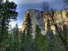 Images by Godfrey  Yosemite - El Capitan  Imagesbygodfrey.com