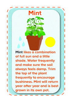 From lamb to mojitos, mint is an essential ingredient. Make sure you take care of it so you'll have plenty to last.