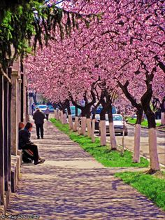 Spring time in my city. Hunedoara, Romania