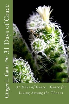 31 Days of Grace:  Grace for Living Among the Thorns by Ginger Ilami, http://www.amazon.com/dp/B00HNCF53U/ref=cm_sw_r_pi_dp_5MJeub1F3JT8J