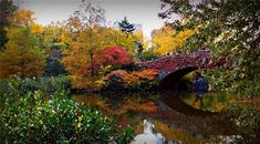 Looking for the perfect October holiday destinations? These 10 October fall getaways are perfect for seeing beautiful fall colors around the world. National Mall, National Parks, October Holiday Destinations, Works Of Shakespeare, Sea To Sky Highway, Airfare Deals, Natural Bridge, Water Activities, Appalachian Trail