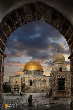 Mosque al aqsa( palestina) Palestine History, Israel Palestine, La Pie Monet, Dome Of The Rock, Islamic Paintings, The Rite, Islamic Wallpaper, Belle Villa, Islamic Architecture