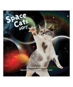 Love this Space Cats 16-Month 2017 Calendar by Quarto Publishing Group USA on #zulily! #zulilyfinds