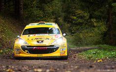 Peugeot 207 S2000 (Sébastien CARRON / Lucien REVAZ) - 55ème Rallye International du Valais 2014