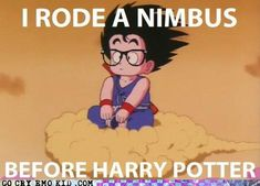 YES!!!! I love Harry Potter but this is awesome! Love DBZ