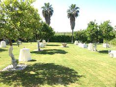 #Jardines de Hacienda Mejina