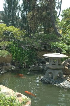 SD Zoo Asian Garden