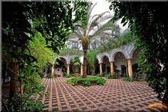 En Andalucía se anuncia con aromas la primavera, cuando los patios de Córdoba se abren para el público. En la primera semana de abril ya s...