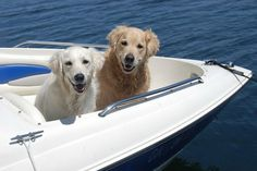 Abby and Alex out for a boat ride