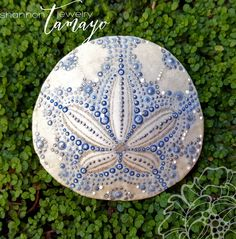 Hand Painted Sand Dollar now available in my shop and ready to ship! Buy your…
