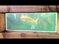 raised koi pond with window construction - YouTube