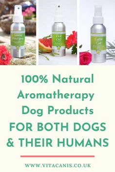 Are you interested in 100% natural aromatherapy dog products for your dog and want to find out more about natural dog care? Vita Canis is ahead of the curb of innovative pet products using essential oils for dogs from Vita Canis. #dogs #pethealth #dogcare #essentialoils #aromatherapy