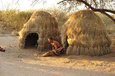 Grass houses in Kalahari, Botswana.