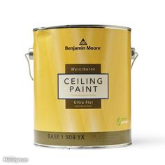 A pro home painter shares his picks for the best ceiling paint, tips for painting smooth and textured ceilings, with equipment selections. Textured Ceiling Paint, Best Ceiling Paint, Ceiling Texture, Painting Ceilings Tips, Ceiling Painting, House Painting, Painted Ceilings, Yellow Ceiling, Colored Ceiling