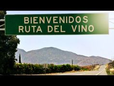 """Explore La Ruta Del Vino in Valle de Guadalupe Wine Country. Looking forward to returning to Valle de Guadalupe to film episodes of """"Taste of Rosé""""."""