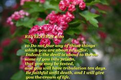 Do not be afraid of what you are about to suffer. I tell you, the devil will put some of you in prison to test you, and you will suffer persecution for ten days. Be faithful, even to the point of death, and I will give you life as your victor's crown. Revelation 2:10 NIV