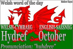 Welsh Word of the Day : Photo