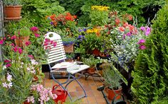balcony-garden-flowers-and-white-chair.jpg (700×438)