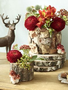 Decorating Mushrooms – 6 creative ideas for the fall - Modern Crochet Angel Pattern, Come Dine With Me, Crochet Santa, Diy Outdoor Furniture, Winter Flowers, Autumn Home, Decoration, Flower Power, Fall Wedding