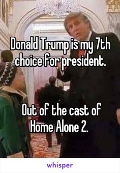 Donald Trump is my 7th choice for president.    Out of the cast of Home Alone 2.