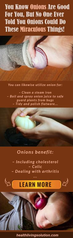 Onions are simple to grow, simple to purchase, simple to keep in your home and are not simply helpful for cooking. They are the most impressive veggies that can assist you combat illness and improve your body immune system. The onion is fill of sulphur which has antibiotic qualities, antibacterial qualities and is filled with …