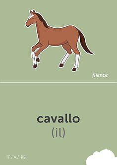 Cavallo #CardFly #flience #animals #italian #education #flashcard #language