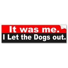 Who let the dogs out?  It was me.