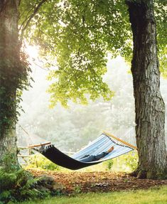 I so want a hammock strung up between a couple of mature shady trees.