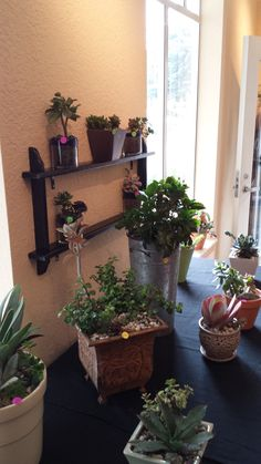 The inside of Urban Succulent's showroom and retail store is now open! Come to the beach and visit us: 450 Dondee St. at Rockaway Beach in #Pacifica, CA!  We are open seven days a week from 12:00 p.m. to 7:00 p.m. And yes, we do custom arrangements too!  Our online store is open 24/7 www.etsy.com/shop/urbansucculent and we offer FREE, next day delivery in #SanFrancisco and #SanMateo County. (Small delivery charge for other SF Bay Area counties.)
