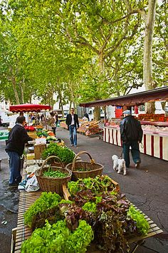 Market of Quai Saint-Antoine, Lyon, Rhone-Alpes, France. Setting for The Silk Romance, by Helena Fairfax Provence France, Paris France, Around The World In 80 Days, Around The Worlds, Places To Travel, Places To Go, Cheap International Flights, Lyonnaise, Champs Elysees