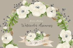 Watercolor anemones. Floral set by NataliVA on @creativemarket