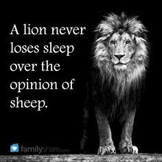 A lion never loses sleep over the opinions of sheep. Positive Thoughts Quotes, Positive Mind, Good Thoughts, Lion Memes, Lion Quotes, Lions Dont Lose Sleep, Sleep Quotes, Focus On Your Goals, Sober Life